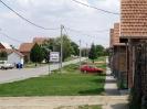 Bogdanovci-10
