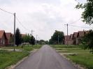 Bogdanovci-8
